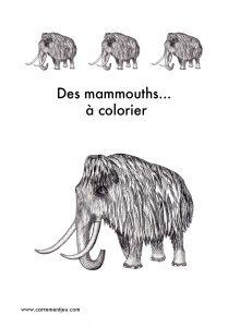 COLORIAGE MAMMOUTH RECTO
